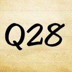 28. क्या साधक मोबाईल, टी.वी. आदि का प्रयोग कर सकते हैं?