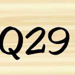 29. जिन्होने नकरा लिया है उनको क्या साधक निवास पर मालिकाना हक दिया जायेगा?